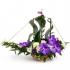 Какой цветок подарить?