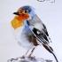 Целый мир прекрасного в открытках ручной работы!