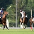 В Москве прошел второй Российско-Французский турнир  по конному поло