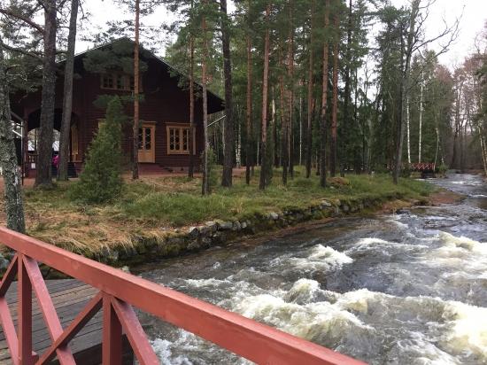 Дневник путешественника: зачем и куда поехать в Финляндию